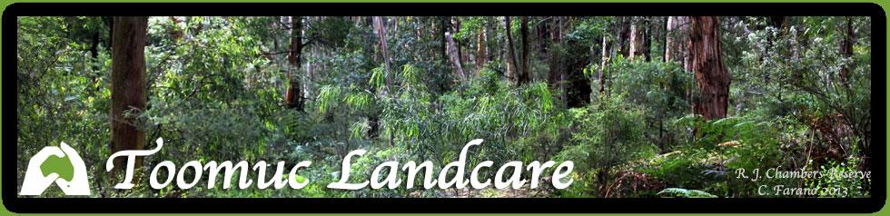 Toomuc Landcare - Lace Monitor or Tree Goanna – Varinus varius